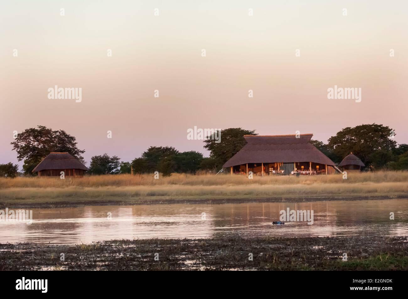 Zimbabwe Département Parc National Hwange Shuba Hwange hippo Camp des Plaines un trou d'eau (Hippopotamus Photo Stock