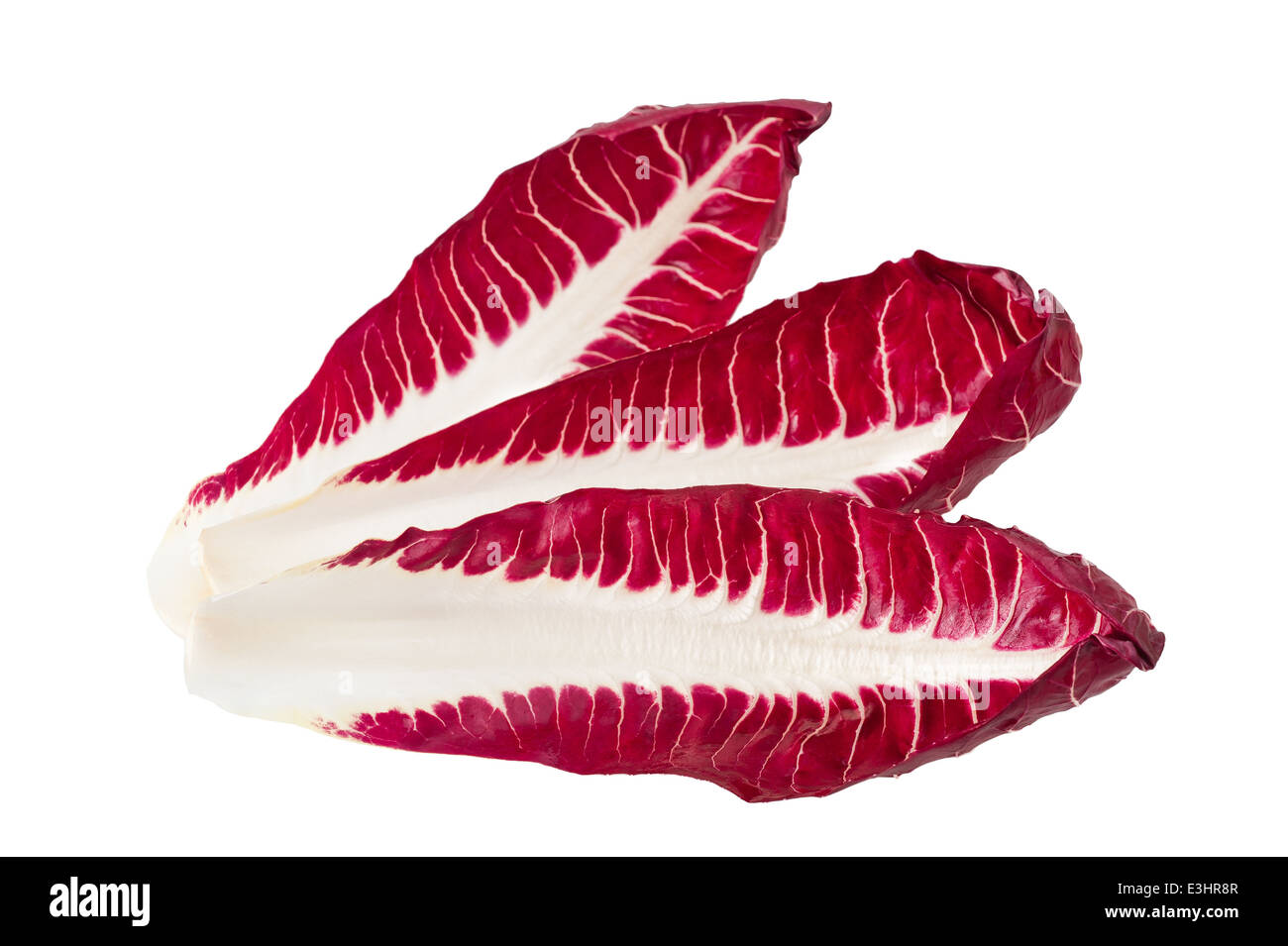 Les feuilles de chicorée rouge isolated on white Banque D'Images