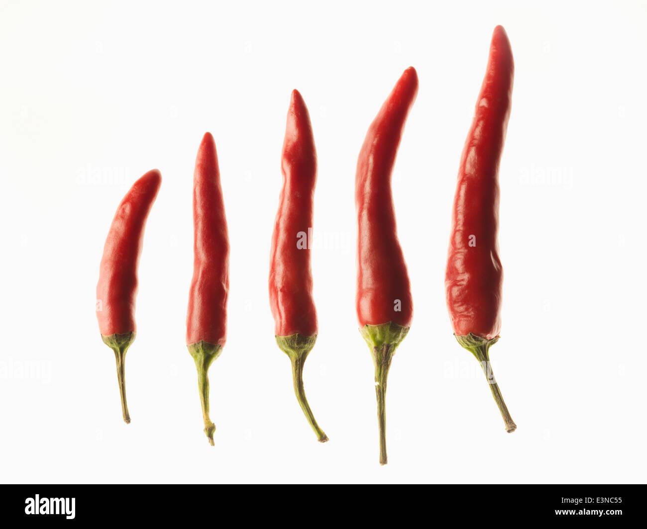 Piments rouges dans l'ordre de grandeur sur fond blanc Photo Stock