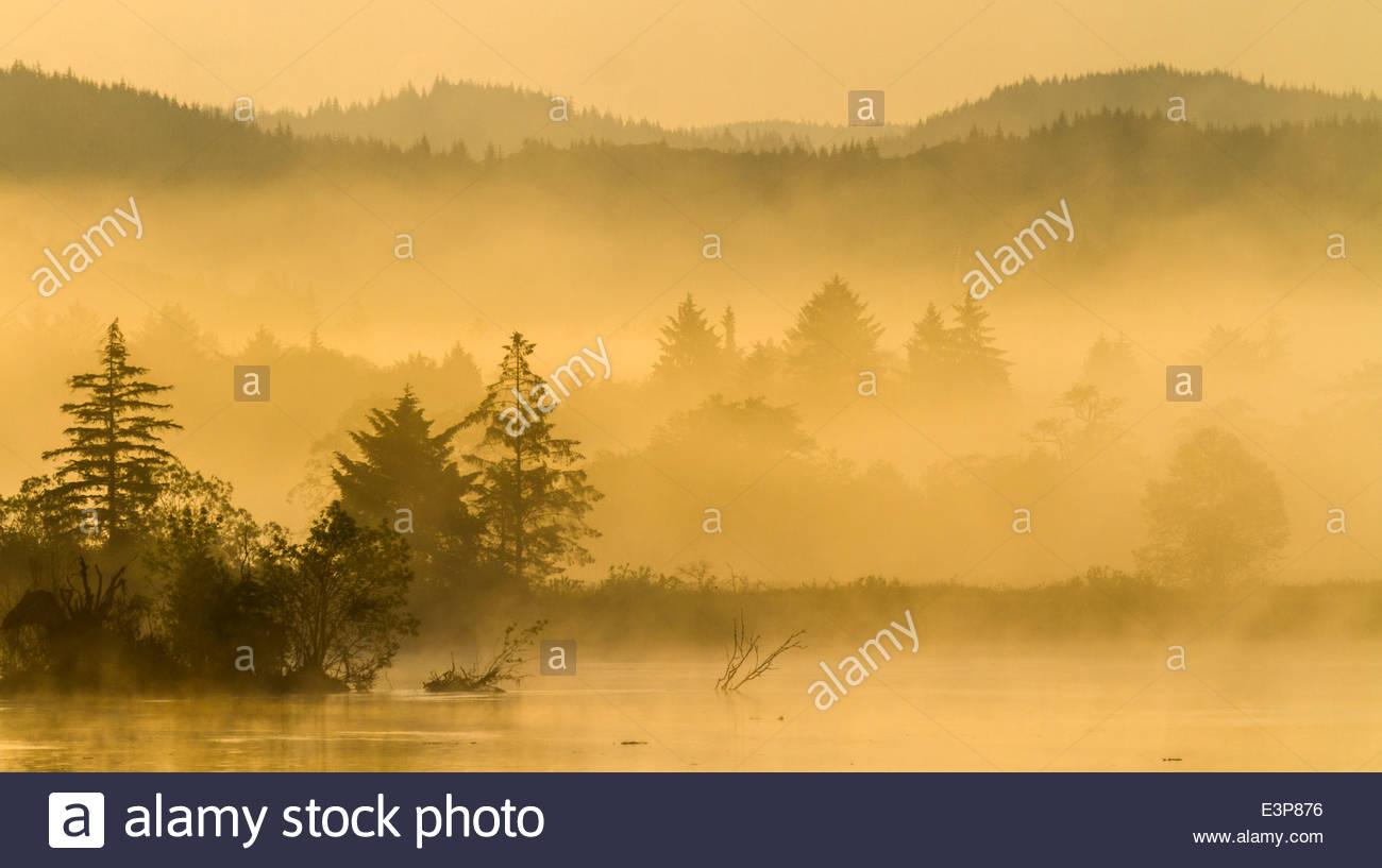 Un beau matin sur la section inférieure de la rivière Columbia, juste avant qu'elle accueille brusquement Photo Stock
