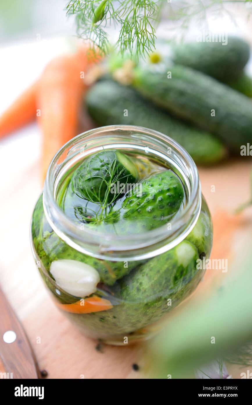 Les concombres frais dans le pot, juste remplie de saumure. Photo Stock