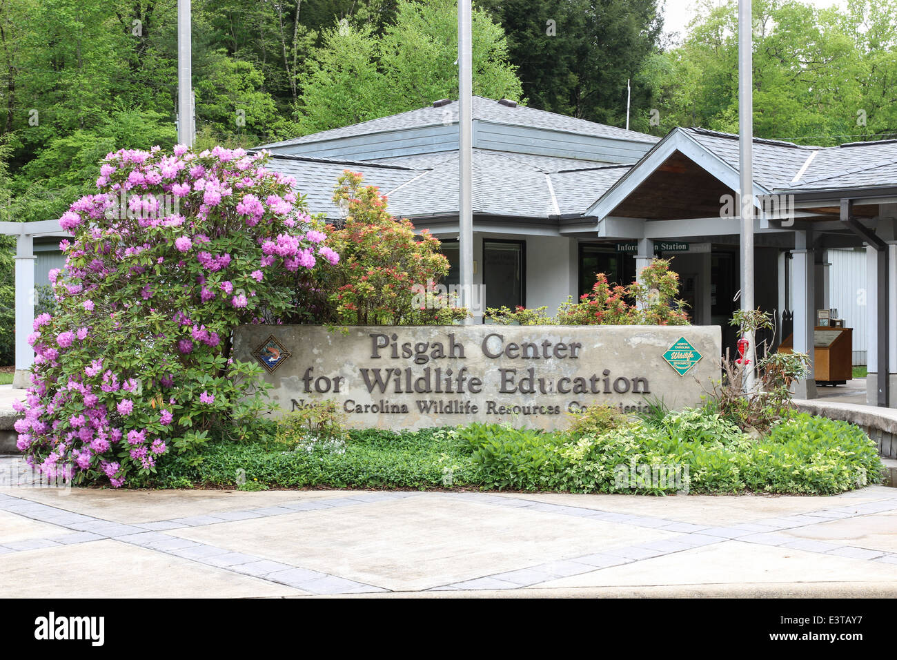 Pisgah Centre for Wildlife Education in Pisgah Forest National près de Brevard, Caroline du Nord est l'accueil d'une Banque D'Images