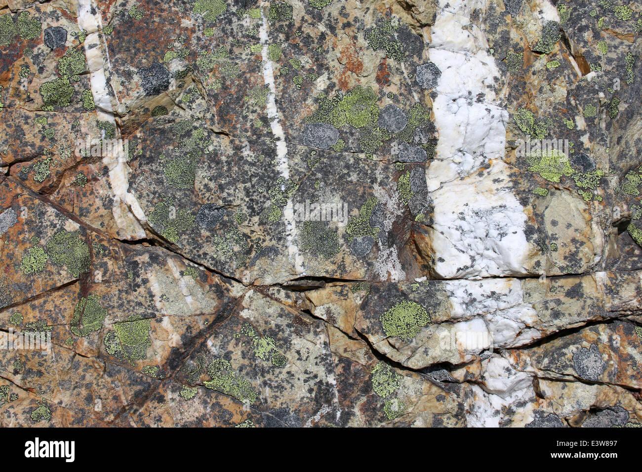Les filons de quartz qui traverse la Rhyolite Photo Stock