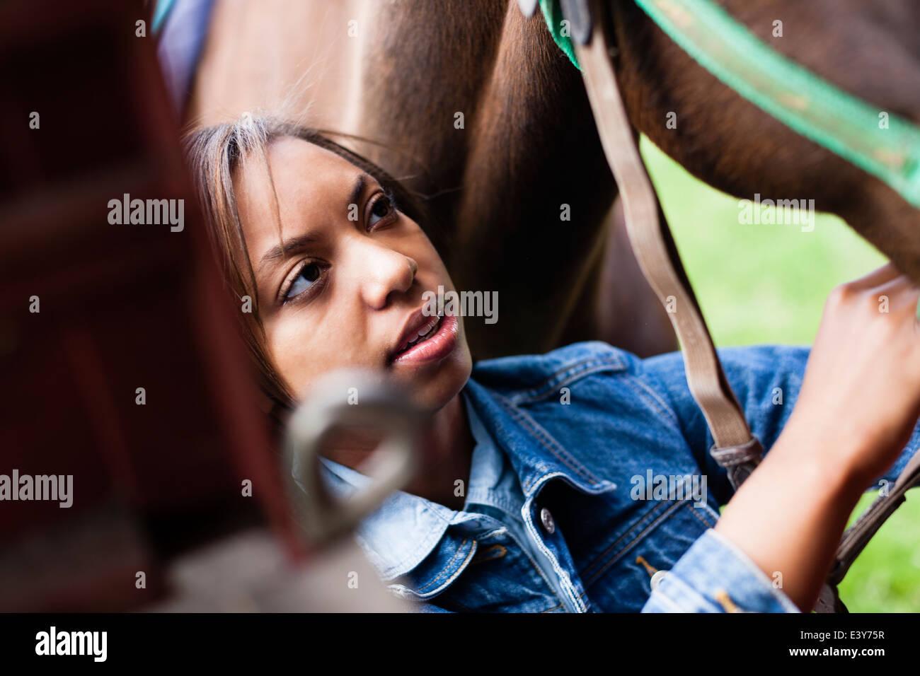 Rider cheval toilettage Photo Stock