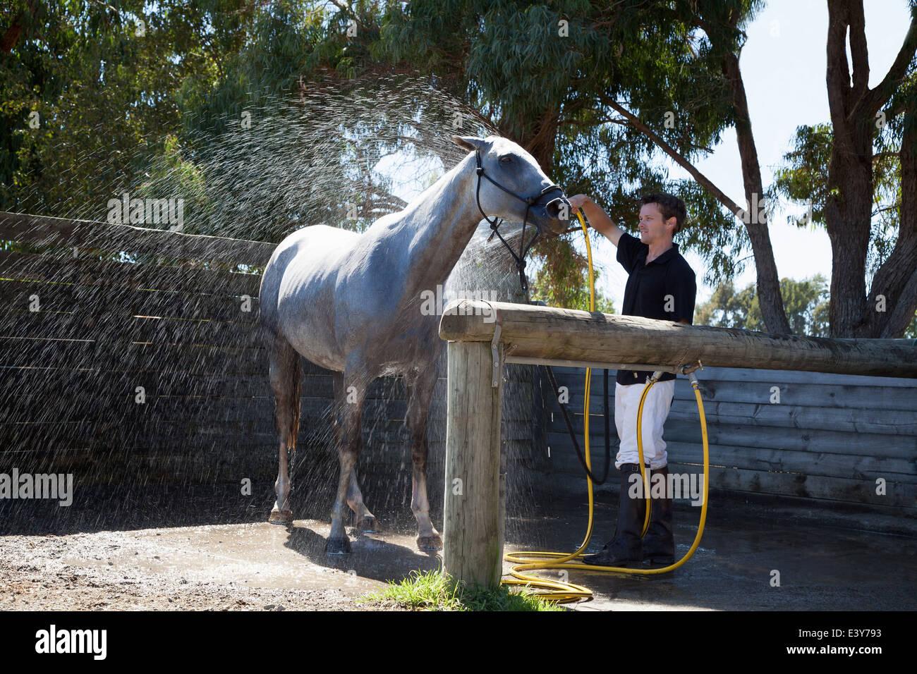 Mid adult man horse à l'aide du flexible Photo Stock