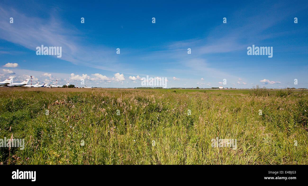 Paysage d'été Banque D'Images