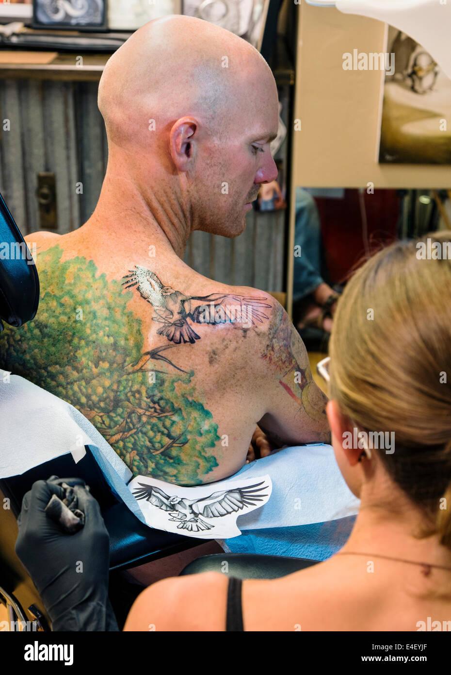 Femme Tatouage Un Aigle Sur Le Dos D Un Homme Banque D Images Photo