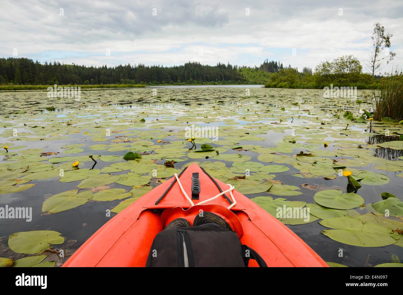 Canoë sur Stroan Loch, Galloway Forest, Dumfries et Galloway, Écosse Photo Stock