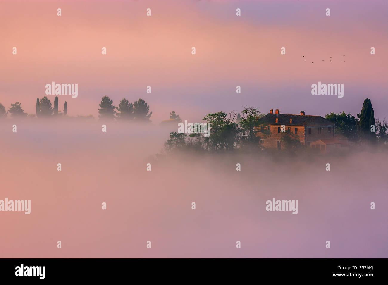 Célèbre Podere Belvedere dans la lumière du matin, au cœur de la Toscane, près de San Quirico Photo Stock