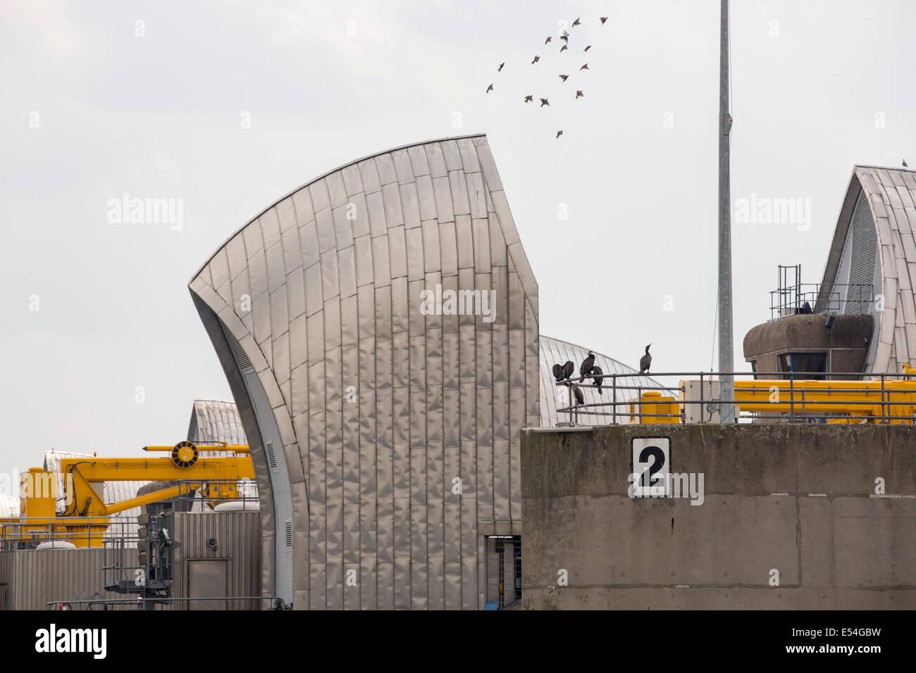 La Thames Barrier sur la Tamise à Londres. Il a été construit pour protéger la capitale à Photo Stock