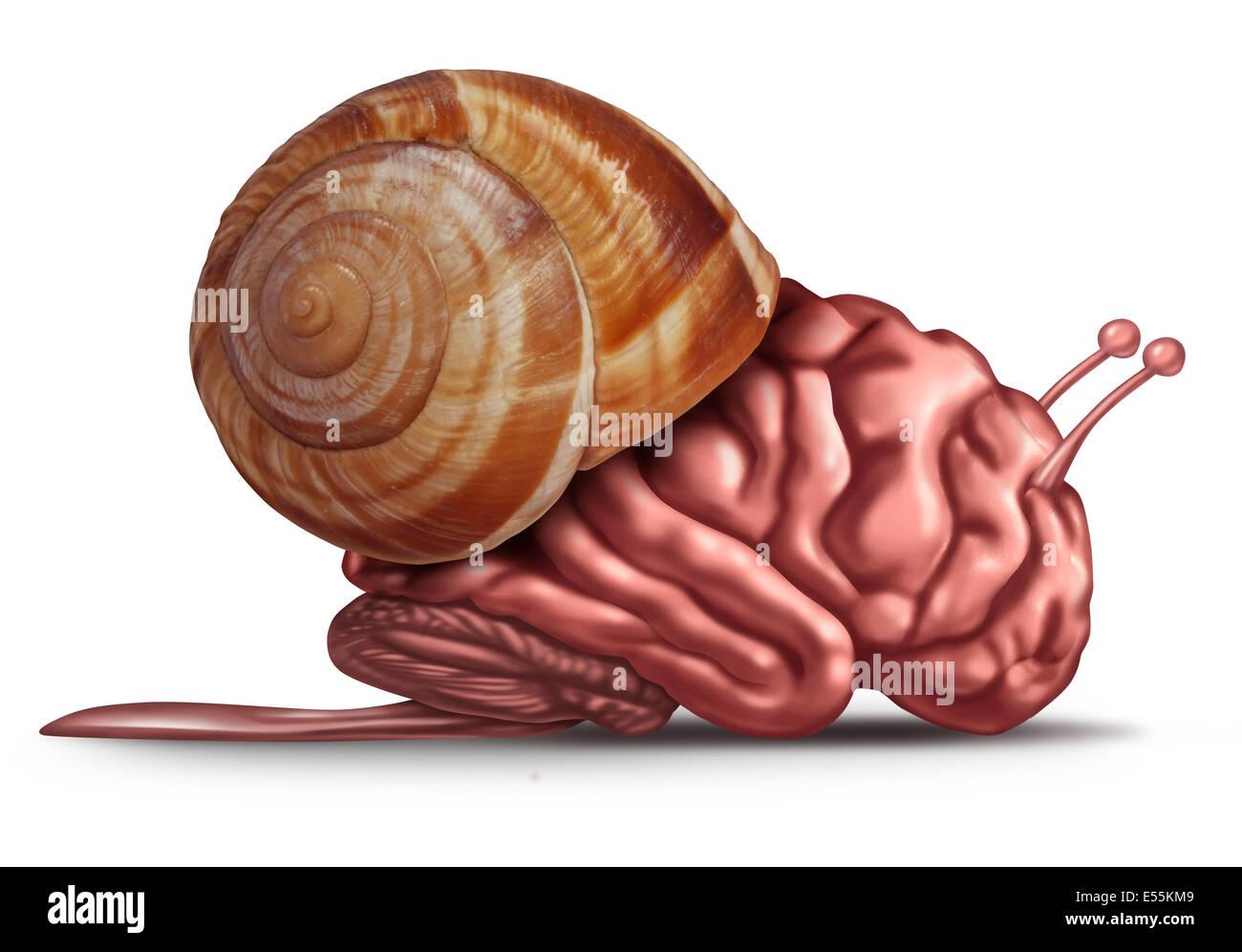 Penser les problèmes de la fonction du cerveau lent et concept comme un organe humain dans une coquille d'escargot Photo Stock