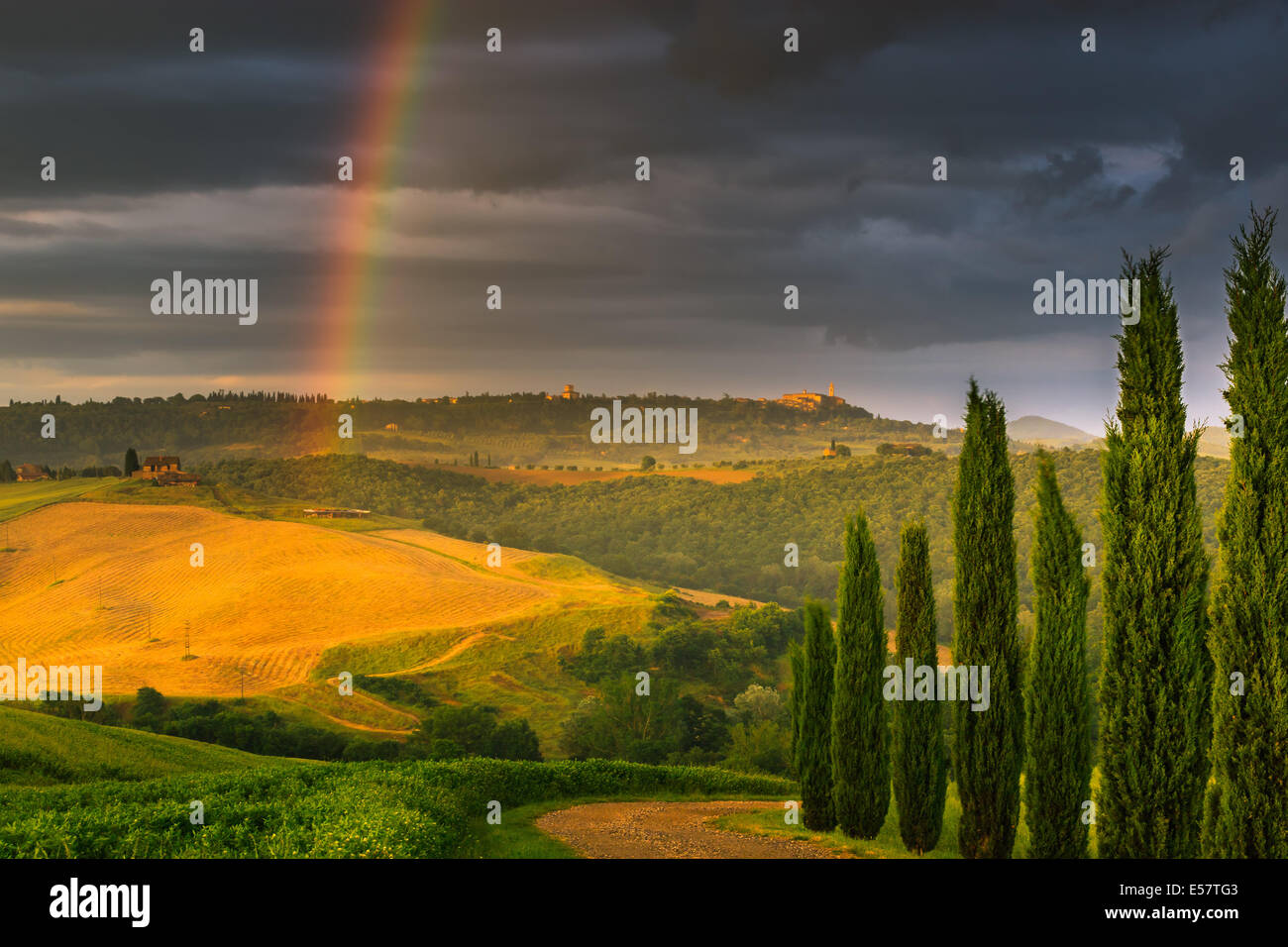 Avec arc-en-ciel célèbre cyprès au coeur de la Toscane, près de Pienza, Italie Photo Stock