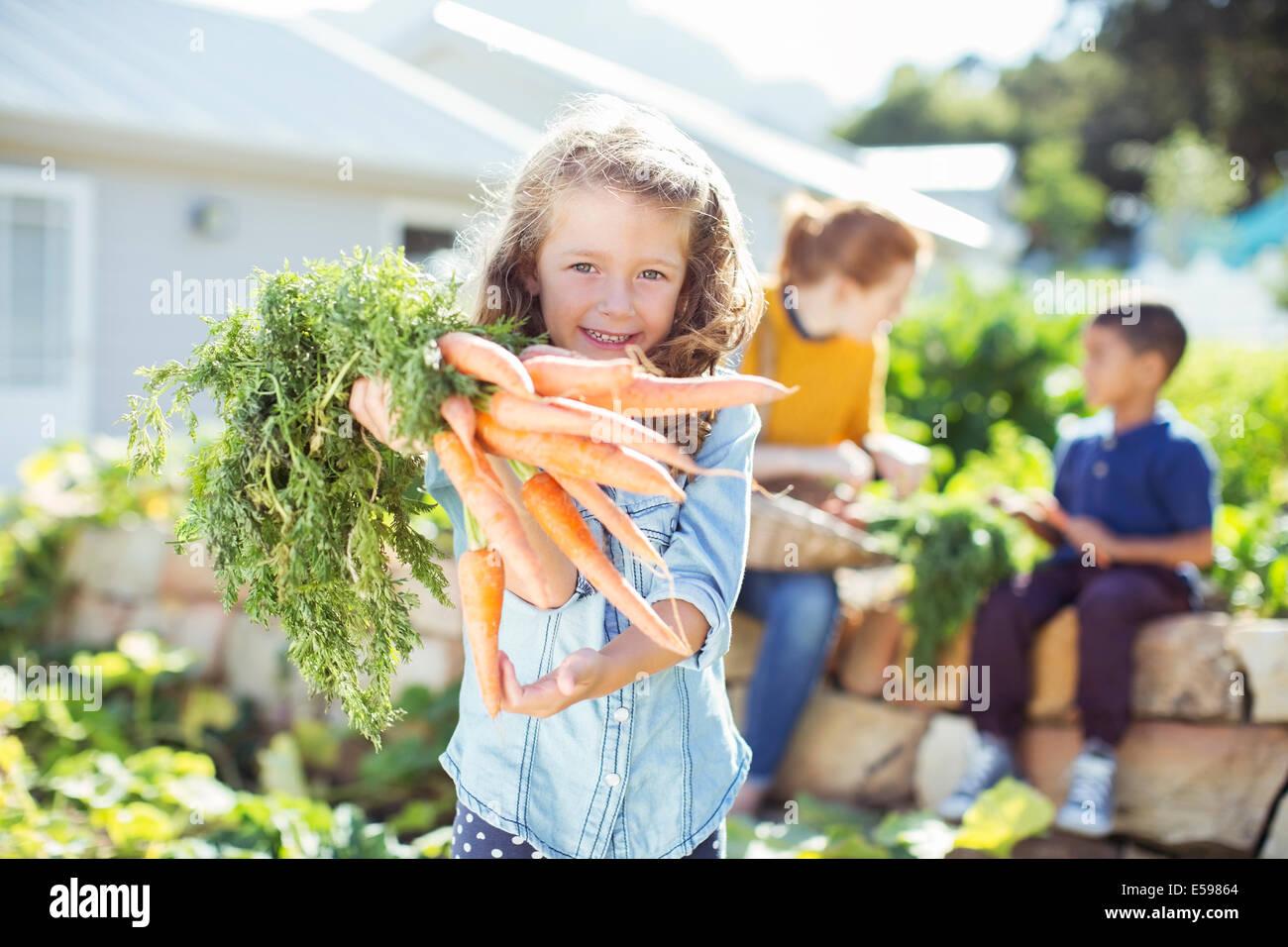 Girl holding bunch of carrots in garden Photo Stock