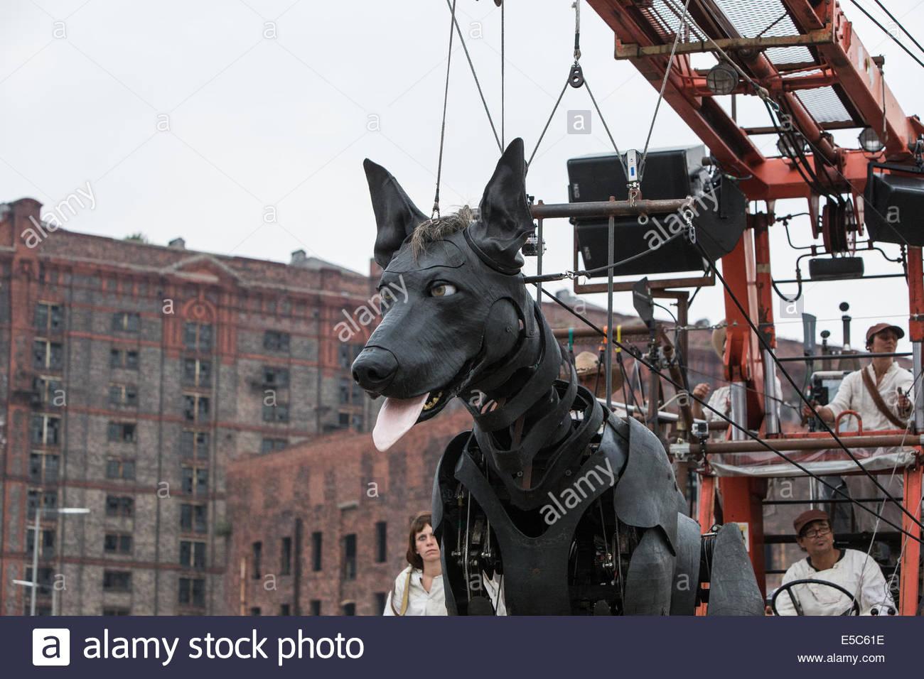 Xolo, le chien à Clarence dock, dans le cadre de la mémoire d'août 1914. Photo Stock