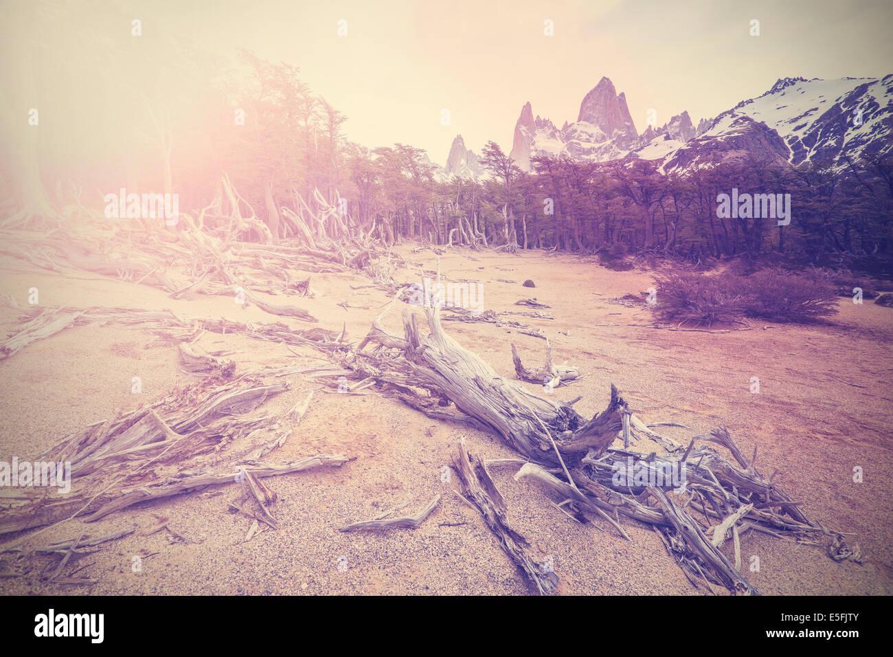 Arrière-plan de montagne vintage avec Fitz Roy, Argentine Photo Stock