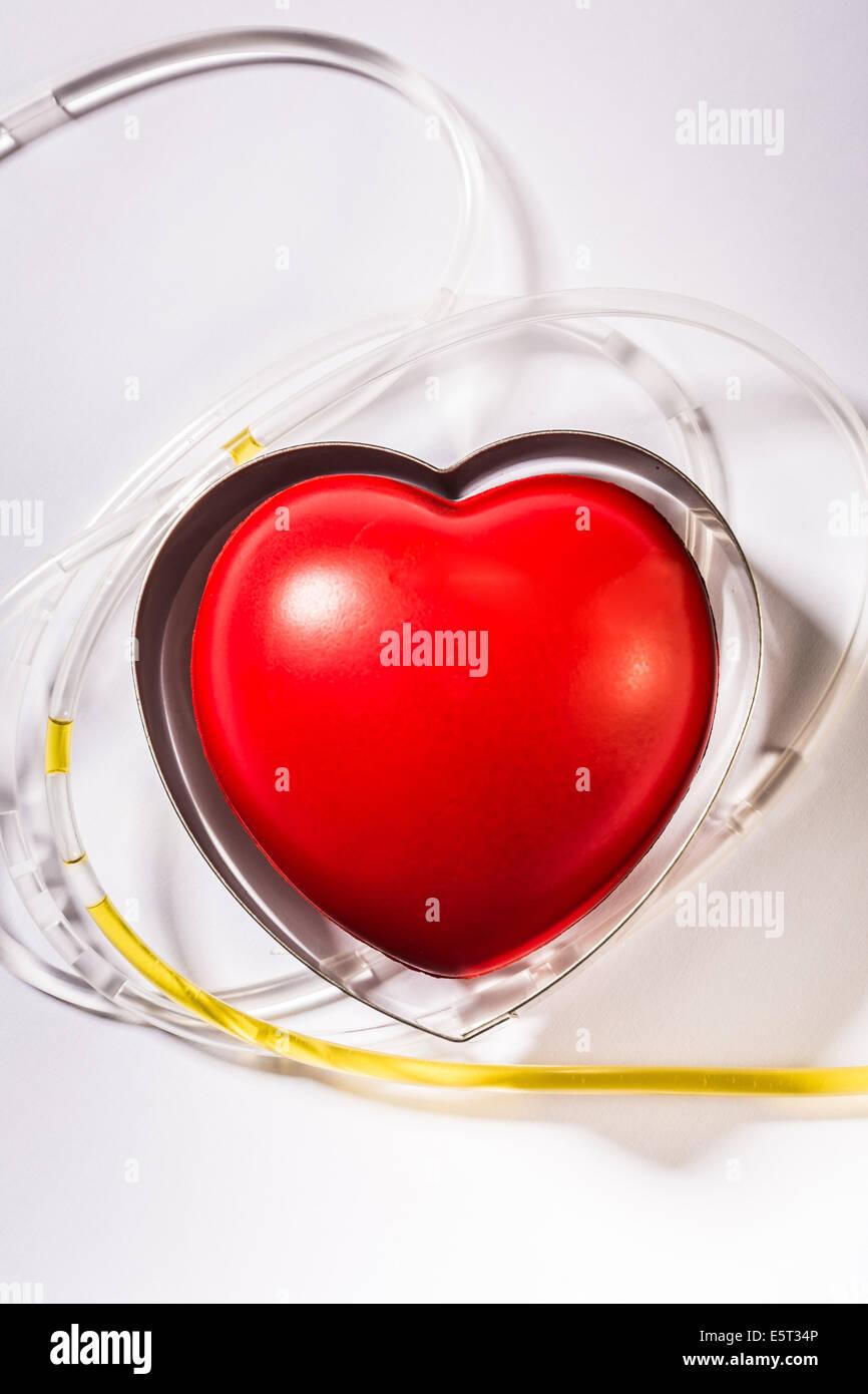 Concept de cholestérol. Photo Stock