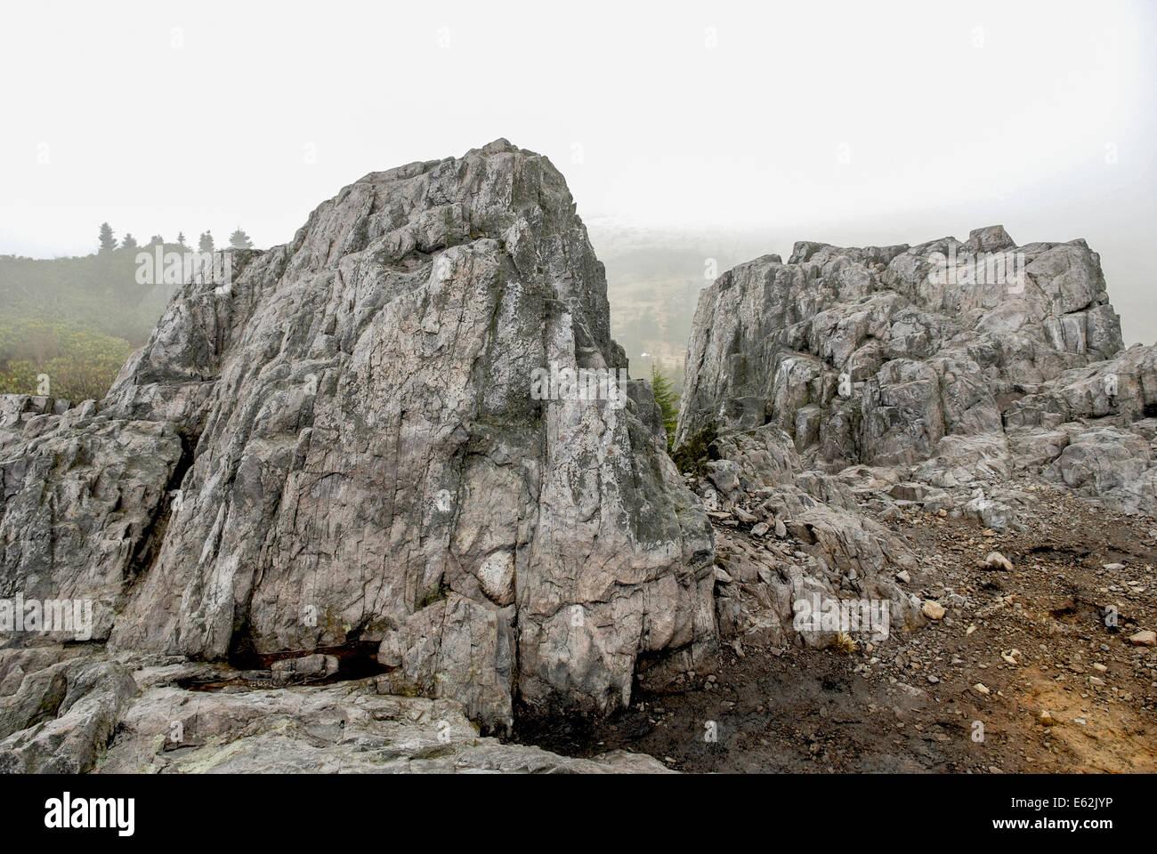 Affleurement rocheux sur un matin brumeux Banque D'Images