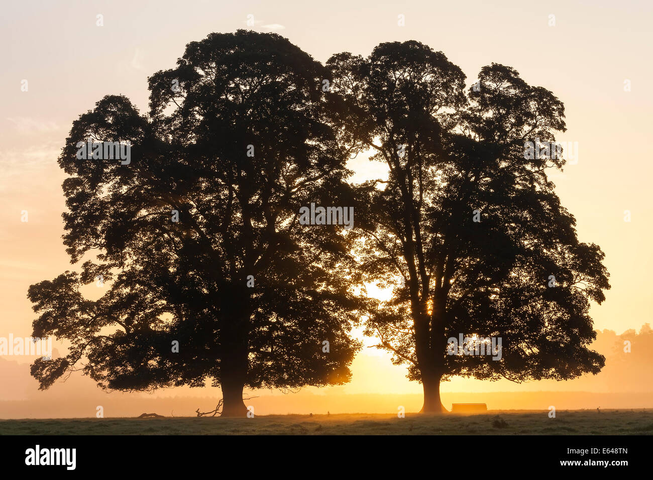 Le lever du soleil, l'Usk Valley, South Wales, UK Photo Stock