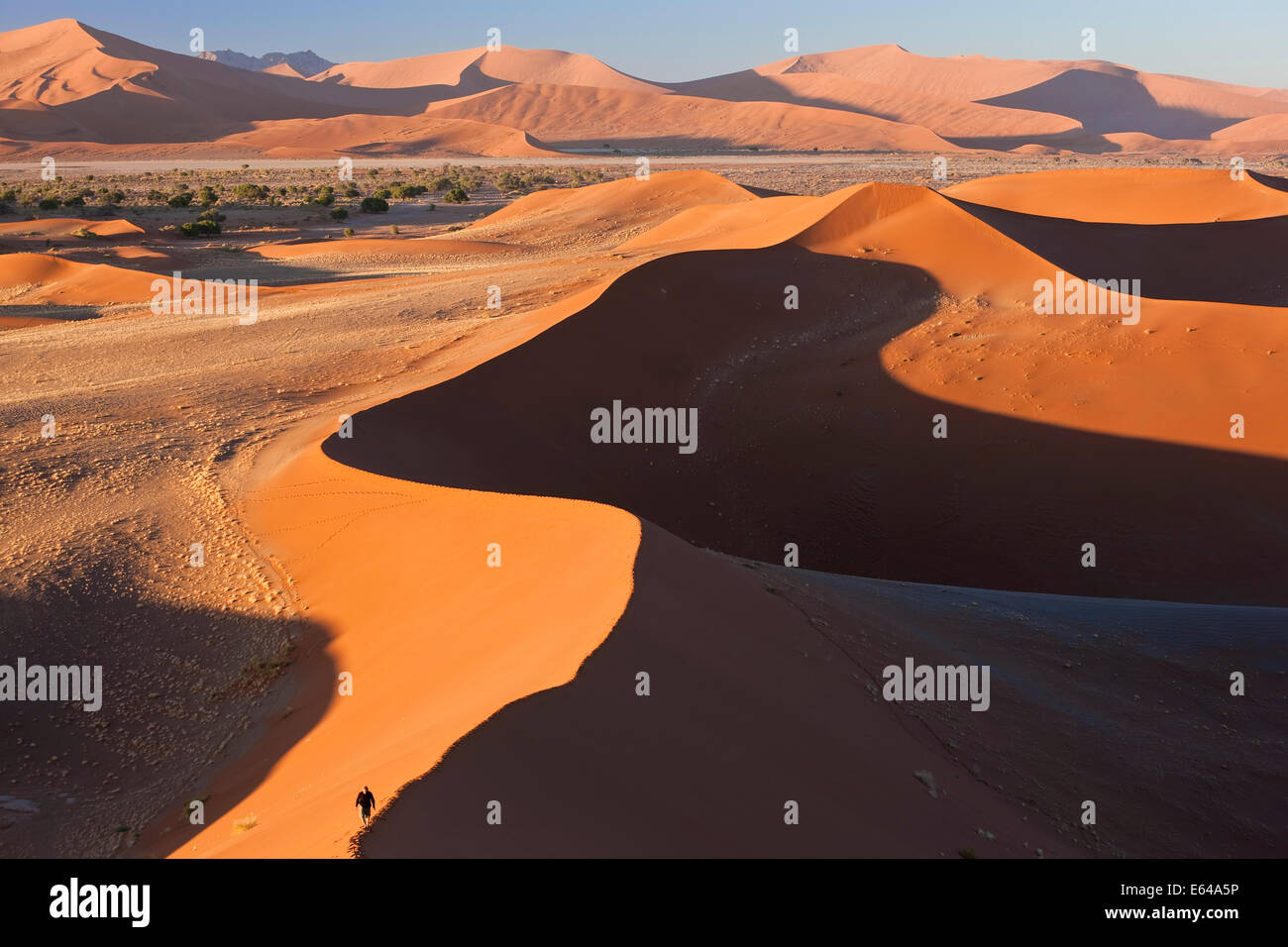 Man climbing sand dunes, Parc National Namib Naukluft, Namibie Photo Stock