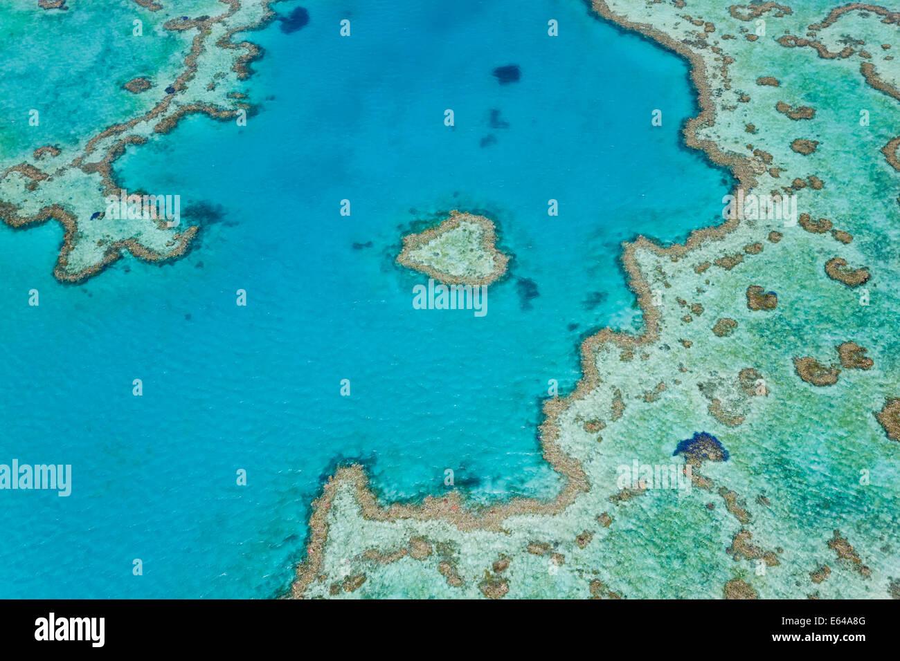 Vue aérienne de coeur de corail, partie d'une grande barrière de corail, Queensland, Australie Photo Stock