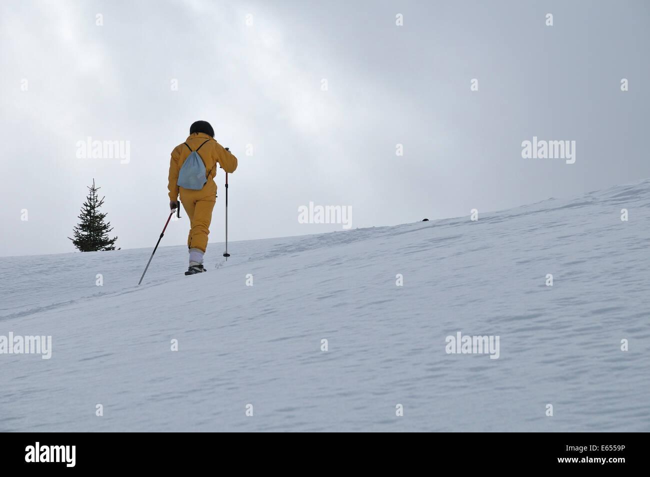 Femme en raquettes en hiver Photo Stock