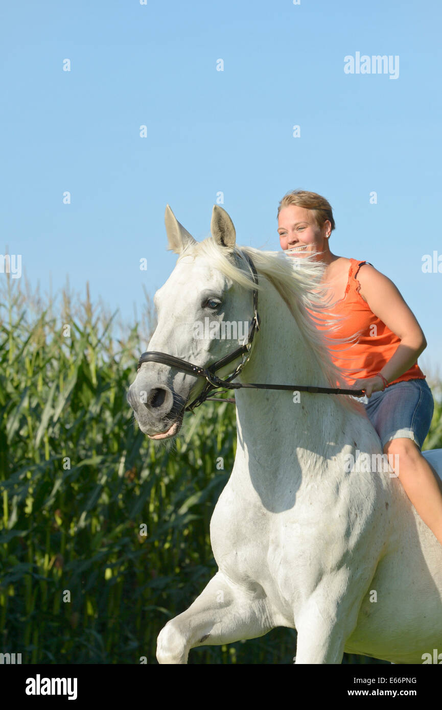 Jeune femme équitation bareback sur 23 ans, cheval galopant de Bavière Photo Stock