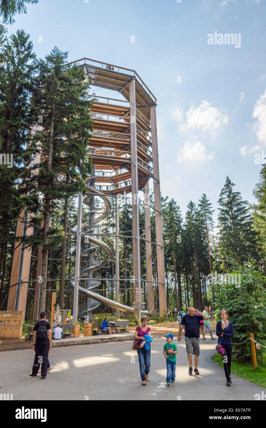 Treetop Walkway, Lipno Photo Stock