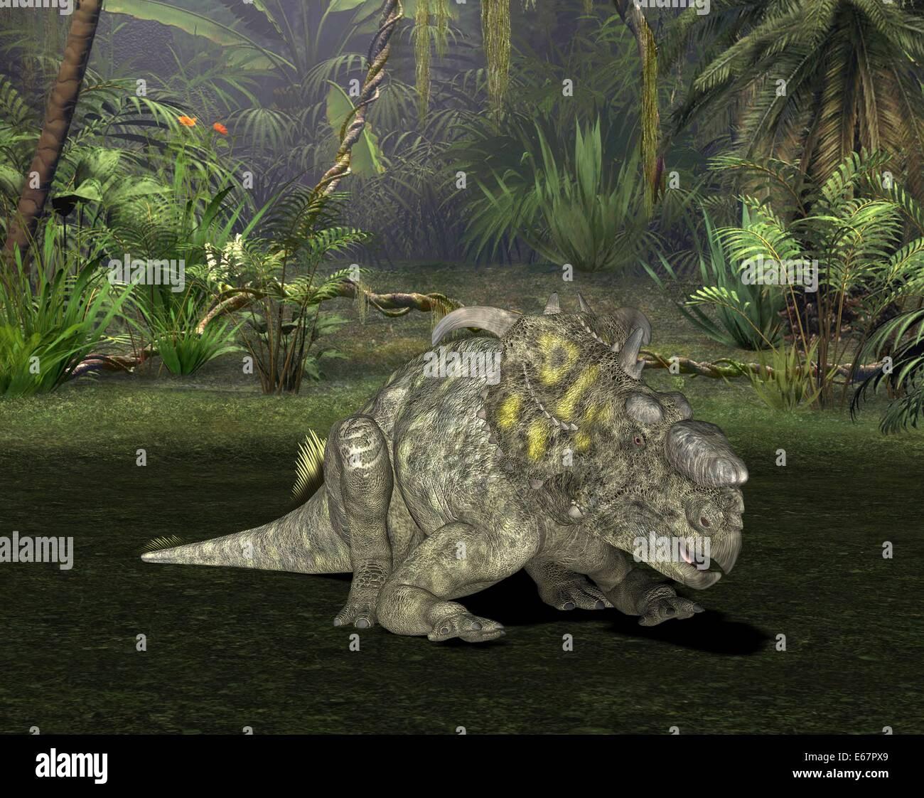 Dinosaure Pachyrhinosaurus Dinosaurier Pachyrhinosaurus / Banque D'Images