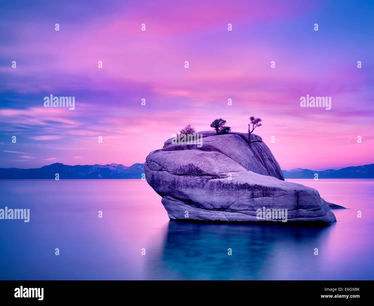 Bonsai arbre sur un rocher avec le lever du soleil. Lake Tahoe, Nevada Photo Stock