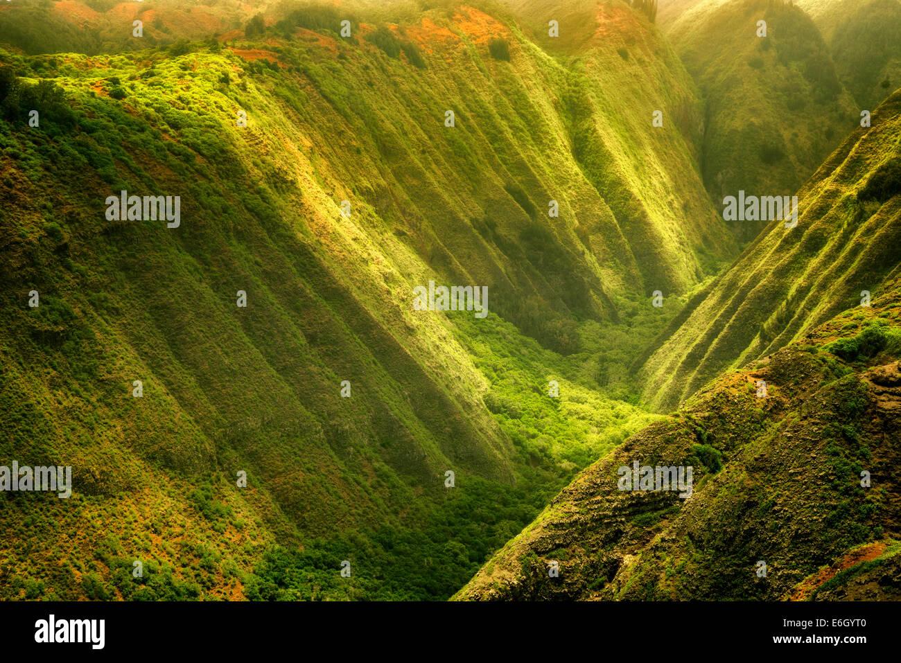 Maunalei avec la vallée de la lumière. pommelé Lanai, Hawaii. Photo Stock