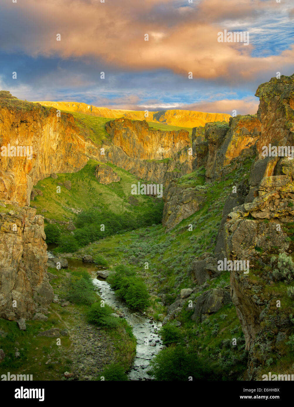 Secours Creek canyon avec coucher de nuages. Malheur County, Oregon Photo Stock