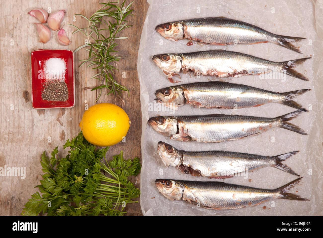 Les sardines fraîches avec des ingrédients de cuisine Photo Stock