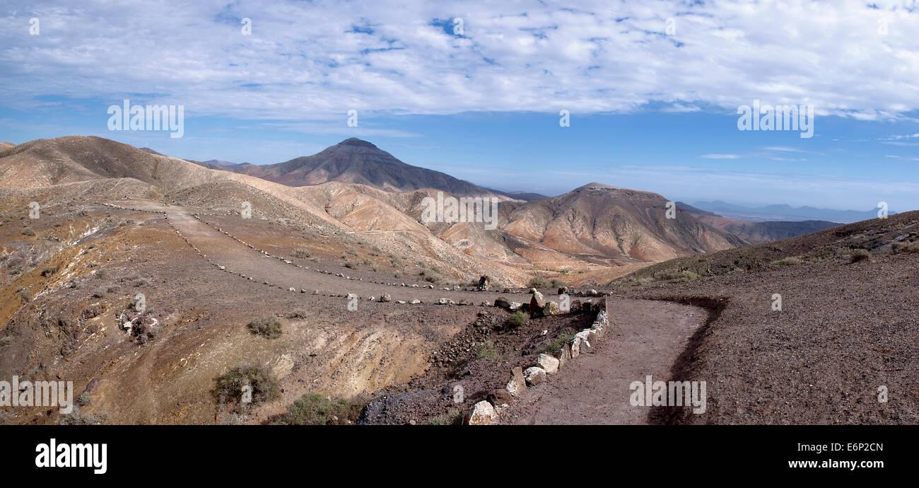 Fuerteventura - chemin du Montana Cardon Banque D'Images