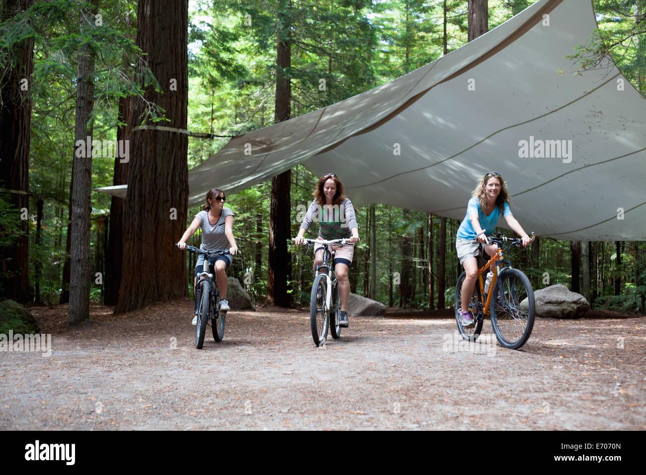 Trois femmes cyclistes de montagne randonnée à vélo à travers la forêt Photo Stock