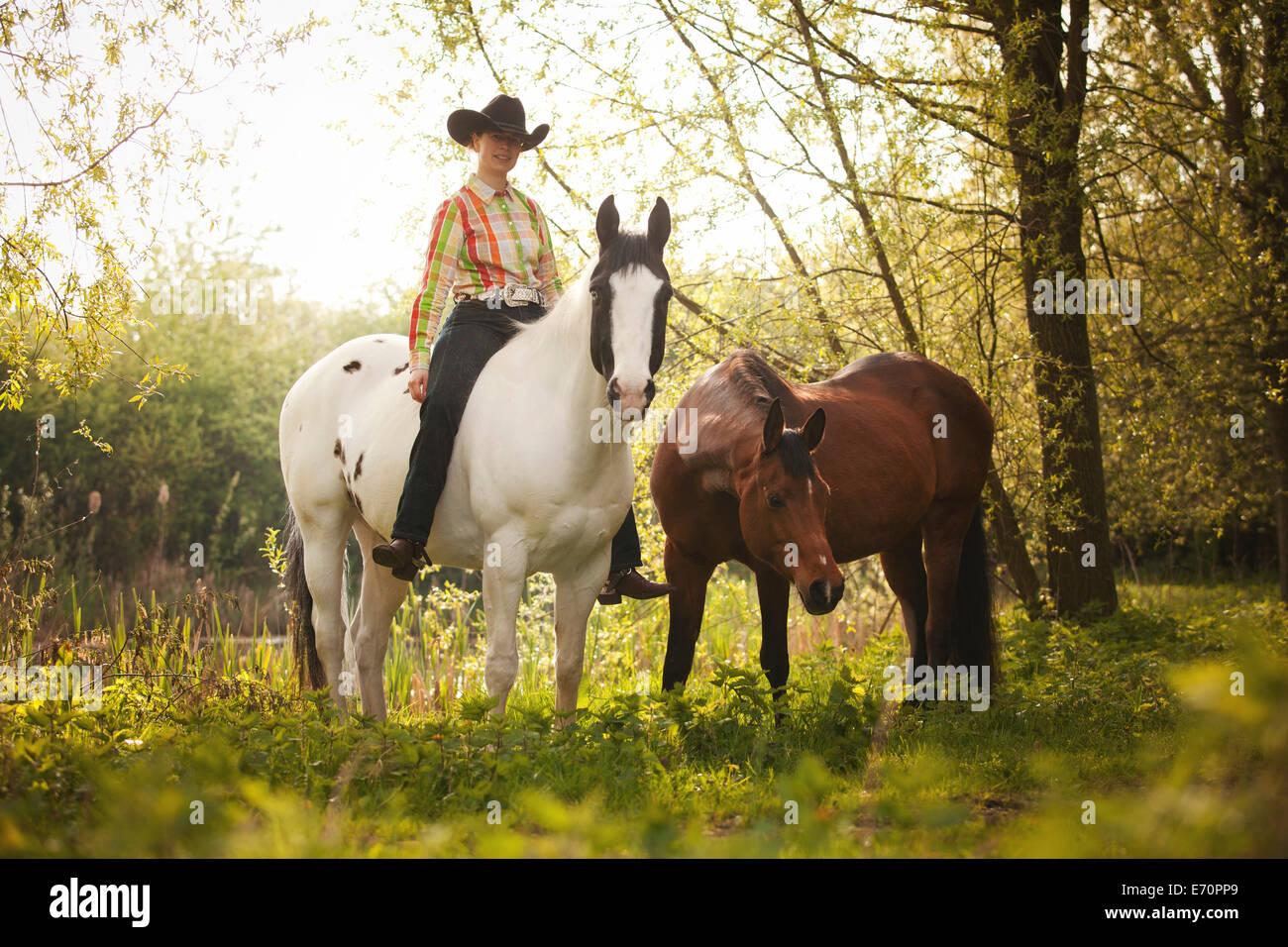 L'ouest femelle cavalier au cheval noir, couleur Tobiano baie, à la tête d'un cheval arabe Shagya, Photo Stock