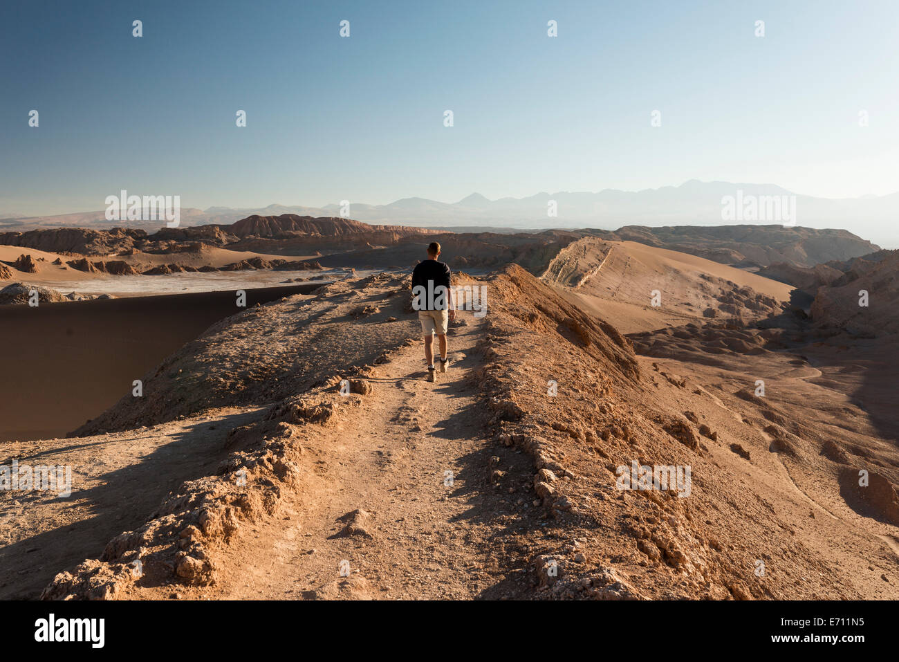 Homme randonnée, Sand Dune Duna (Maire), Valle de la Luna (vallée de la lune), Désert d'Atacama, Photo Stock