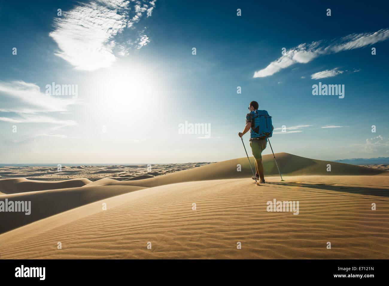 Homme randonnée dans les dunes de sable de Glamis, California, USA Photo Stock