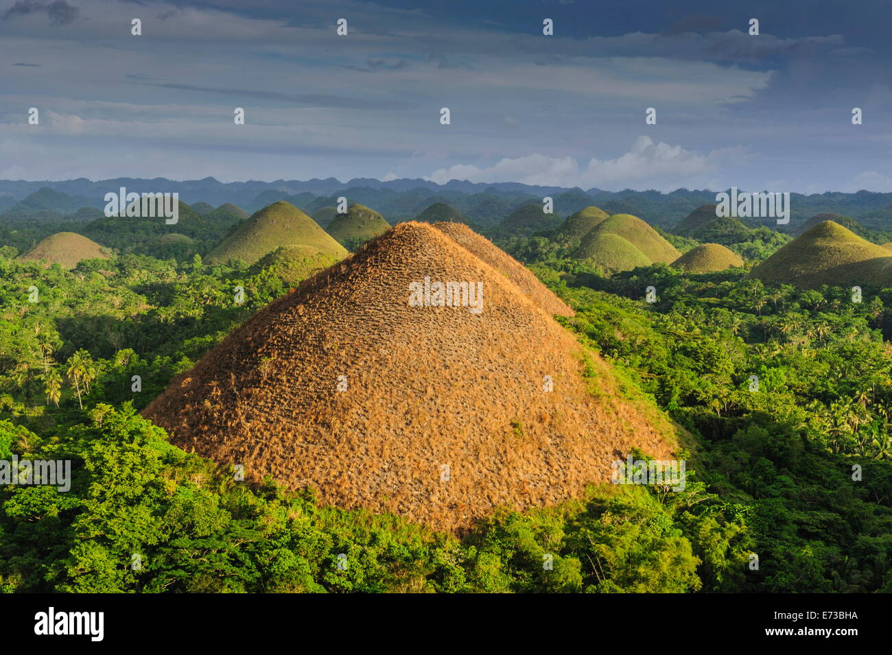Collines de chocolat, Bohol, Philippines, Asie du Sud, Asie Photo Stock