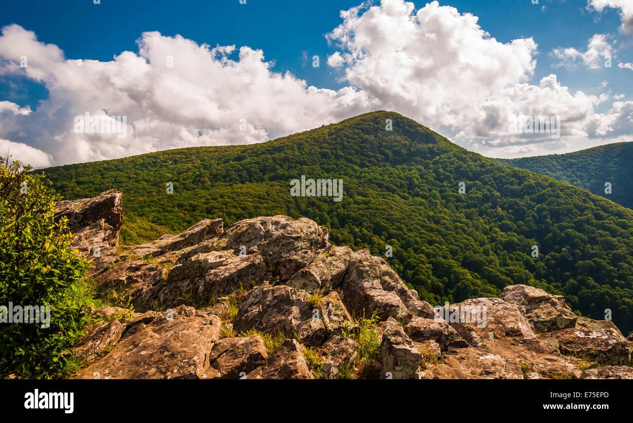 Falaises et vue sur la montagne d'Eretmochelys imbricata sur Crescent Rock, dans le Parc National Shenandoah, en Banque D'Images