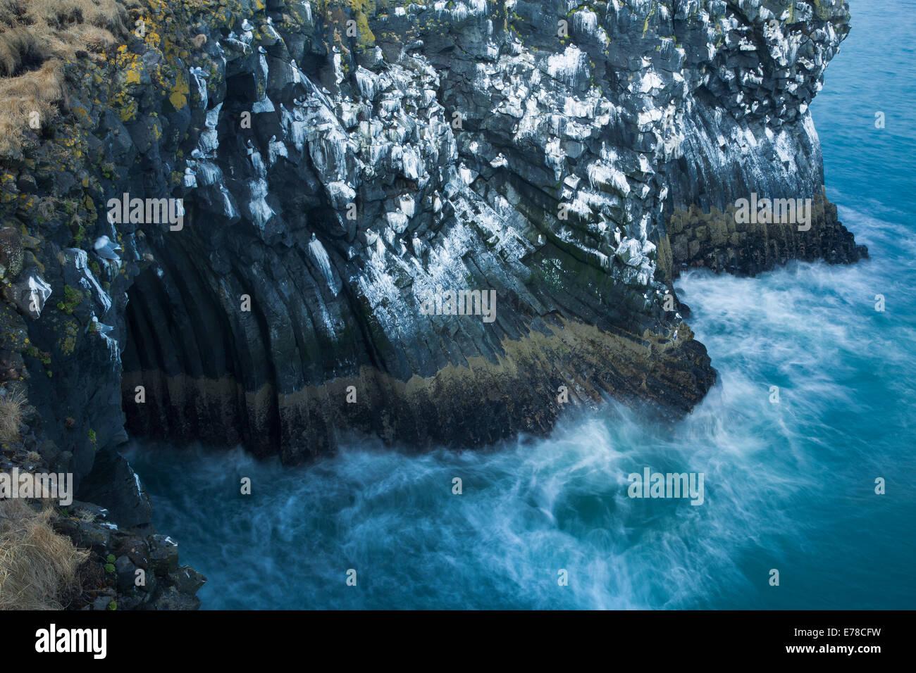 Les falaises striées de guano de fulmars boréaux et les mouettes tridactyles, nr Arnastapi, Péninsule Photo Stock