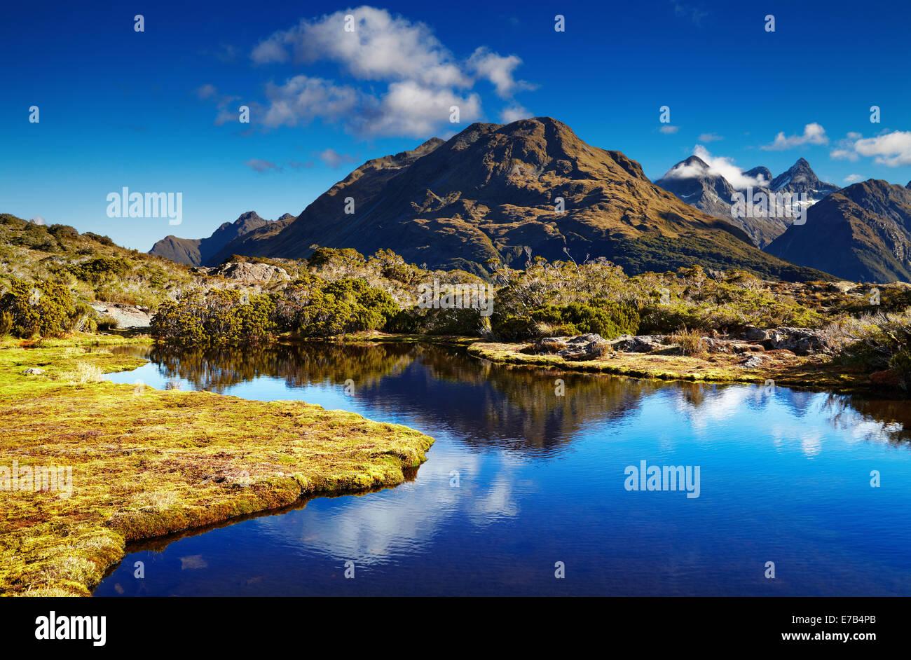 Petit lac au sommet de la clé, Routeburn track, Nouvelle-Zélande Photo Stock
