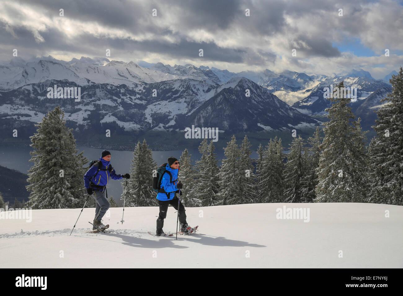L'exécution de chaussures de neige, Rigi, montagne, montagnes, l'hiver, sports d'hiver, canton, Photo Stock