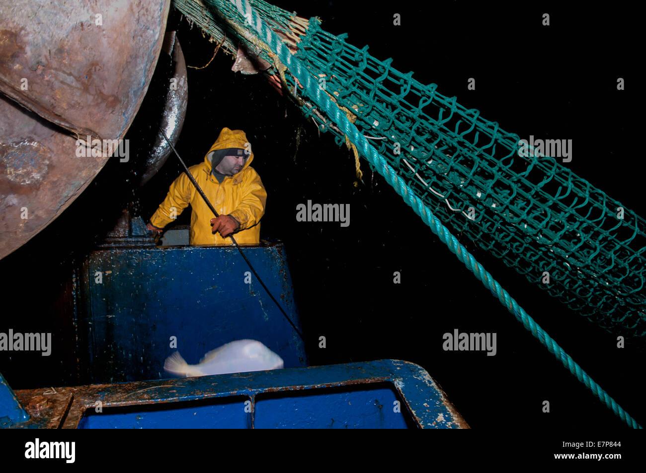 Œuvres pêcheur treuil pour le dragger net sur chalutier de pêche. Banc Stellwagen, New England, United States, North Banque D'Images
