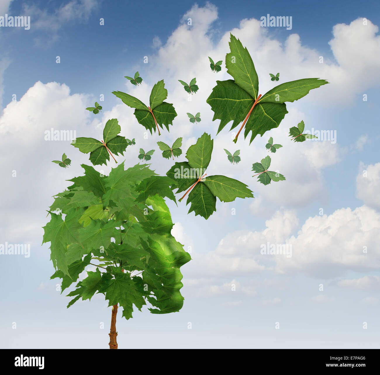 Creative communication et marketing intelligent concept comme un arbre en forme de tête humaine avec le vol Photo Stock