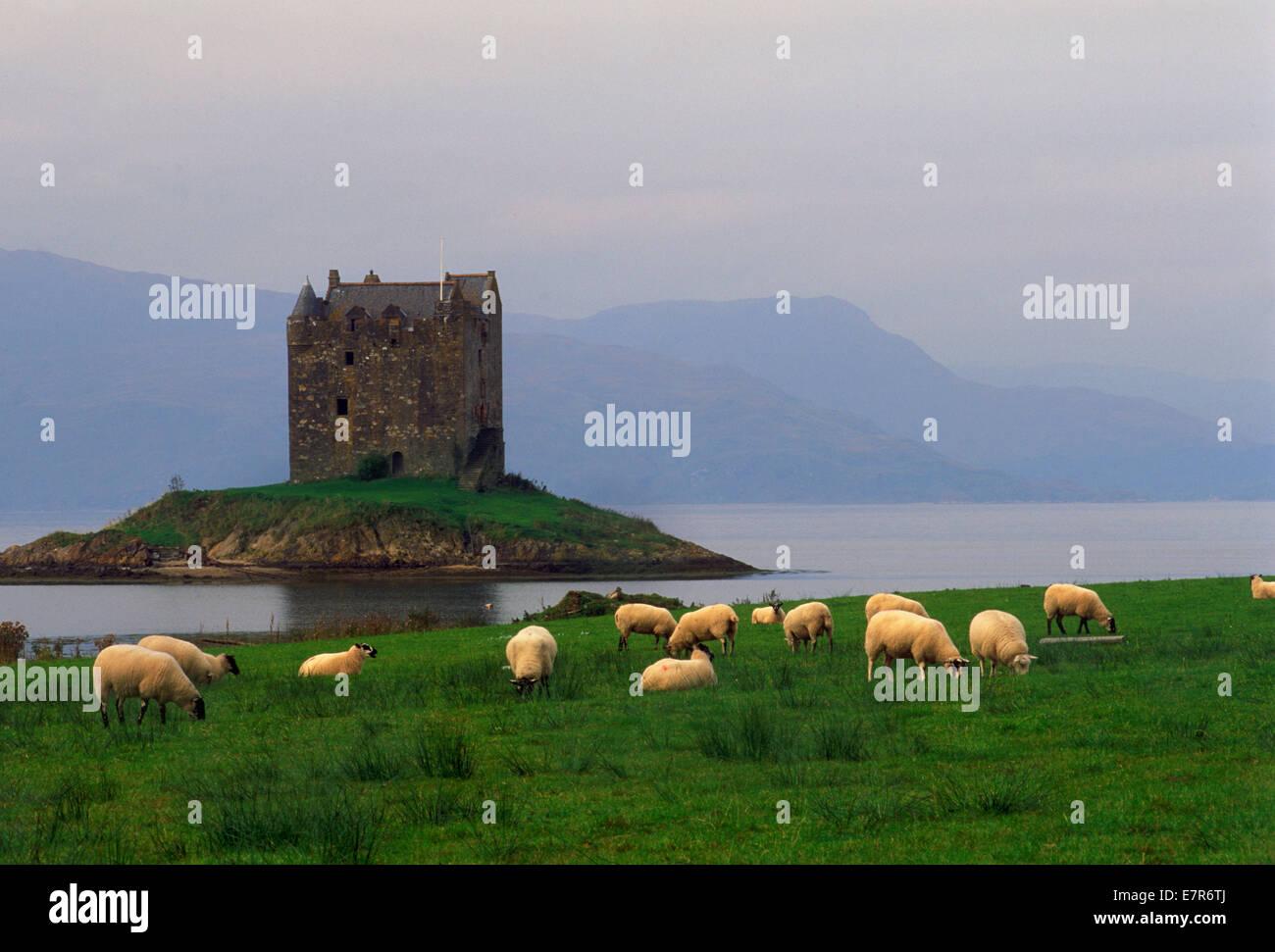 Château de Stalker dans l'Argyllshire près de Glencoe sur le Loch Linnhe, le long de côte ouest Photo Stock