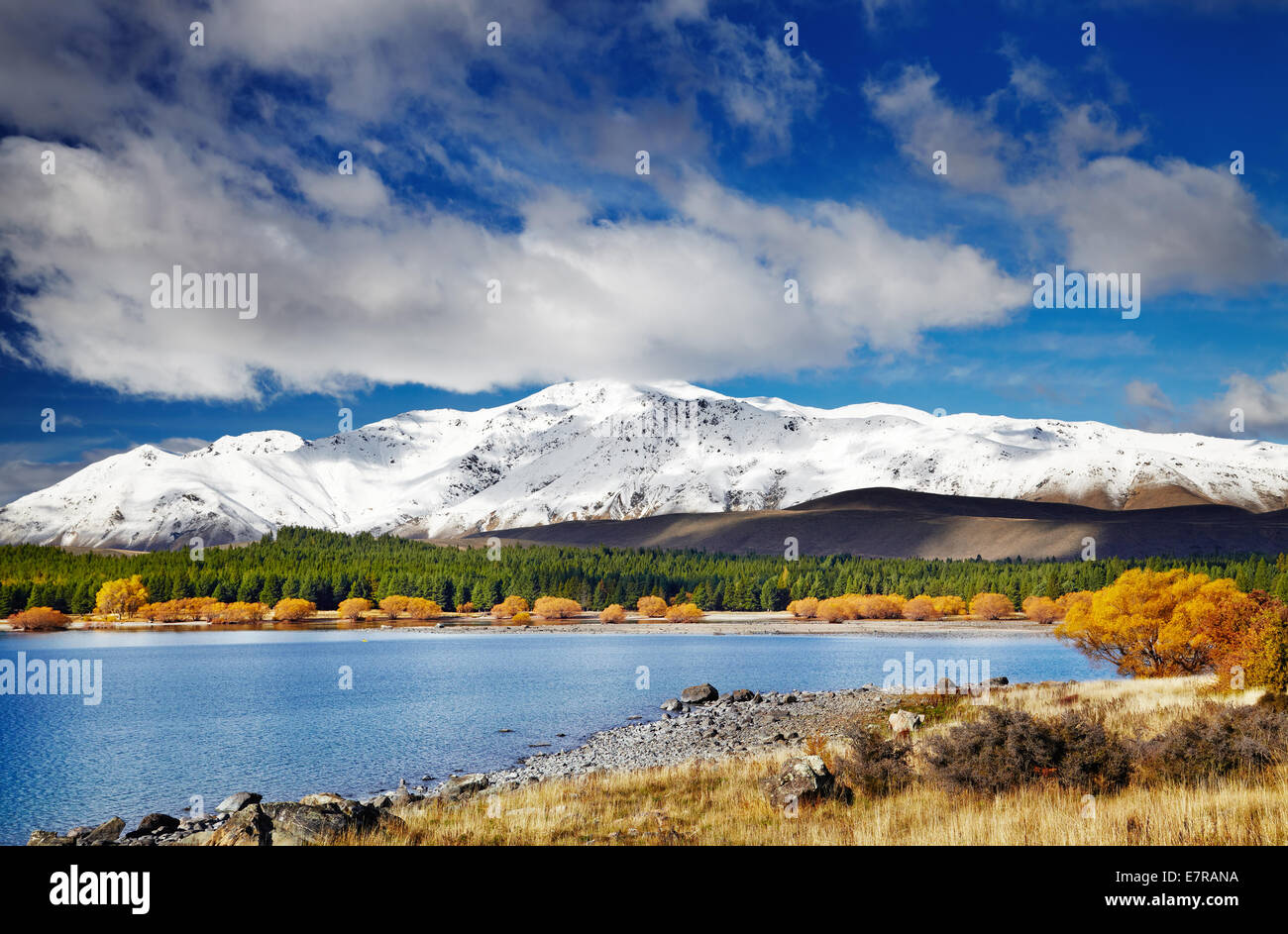 Paysage de montagne, Lake Tekapo, Nouvelle-Zélande Photo Stock