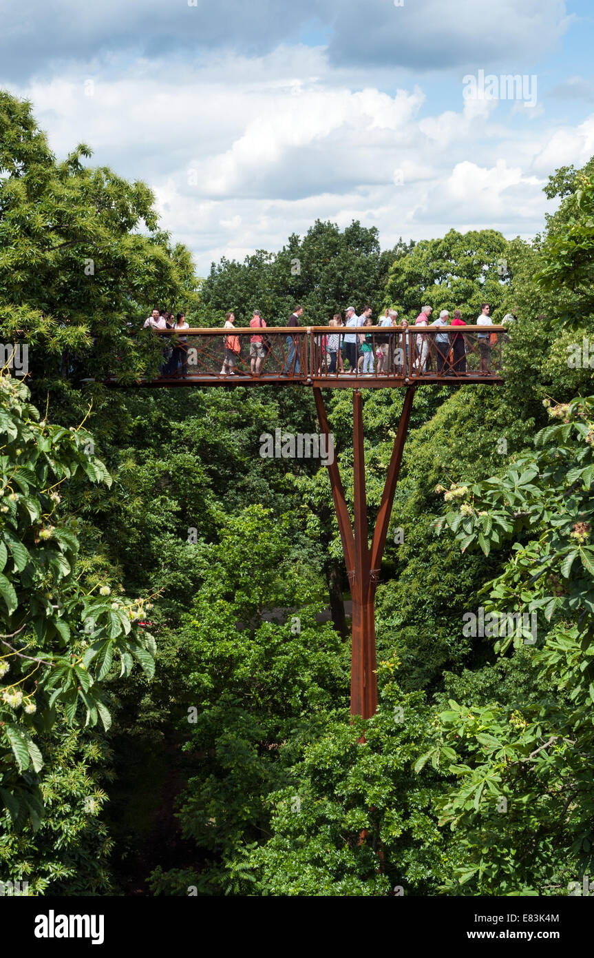 Xstrata Treetop Walkway à Kew Gardens, London, England, UK Photo Stock