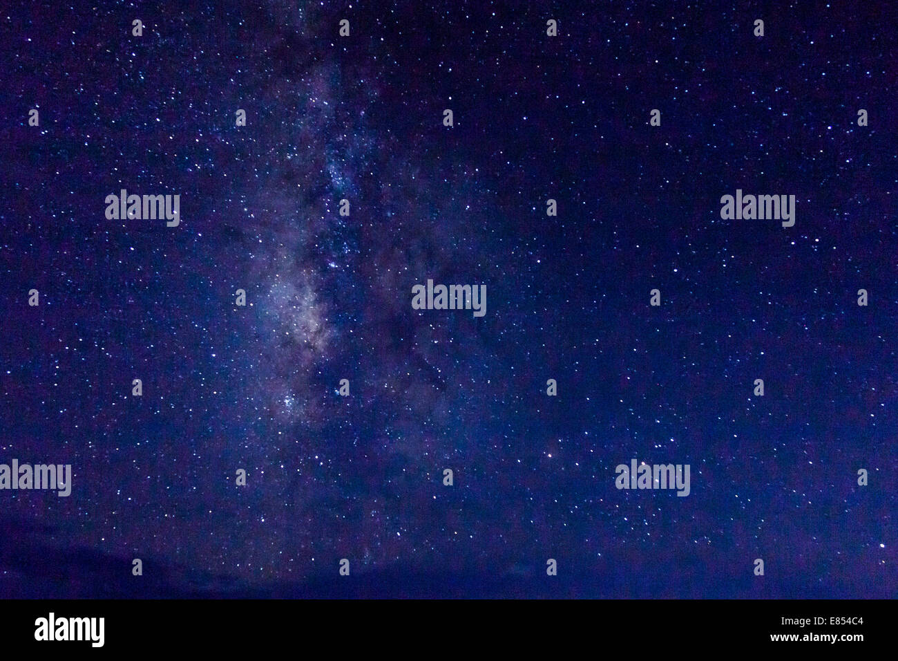 Voie lactée avec des millions d'étoiles dans le ciel de nuit dans le parc national Big Bend. Big Bend Photo Stock