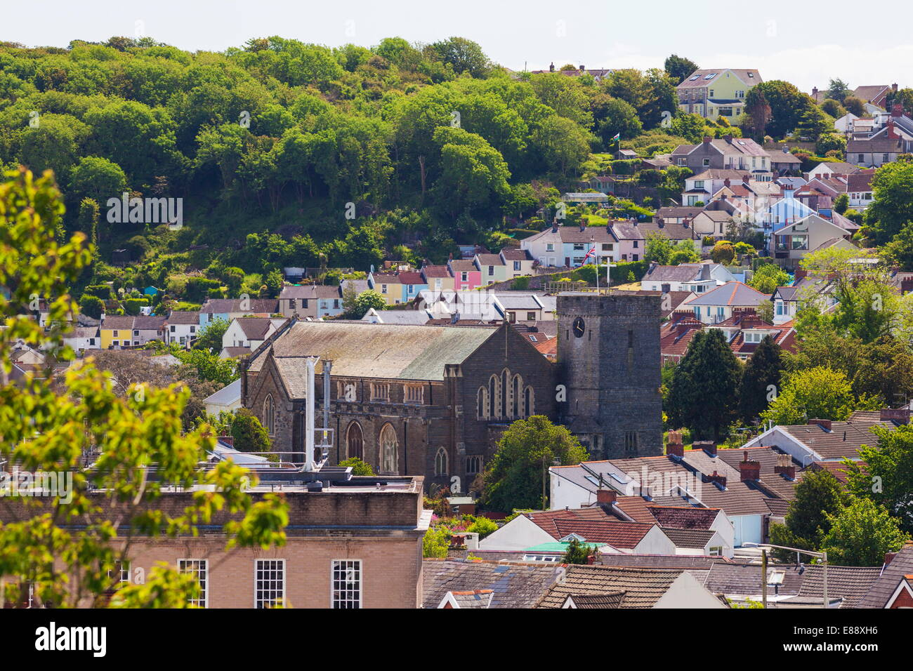 Marmonne, Gower, Swansea, Pays de Galles, Royaume-Uni, Europe Photo Stock