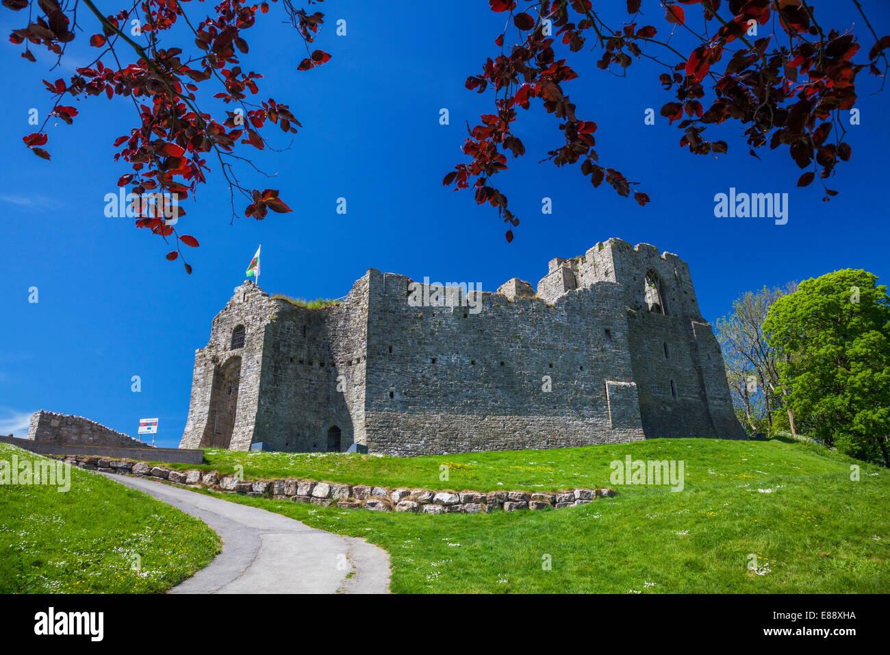 Château d'Oystermouth, marmonne, Gower, Pays de Galles, Royaume-Uni, Europe Photo Stock